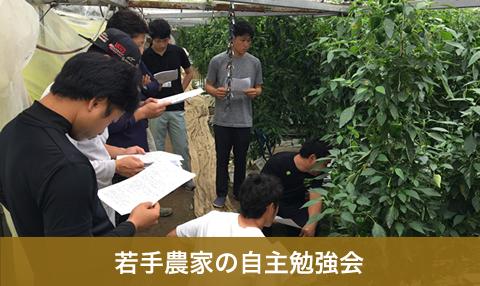 若手農家の自主勉強会